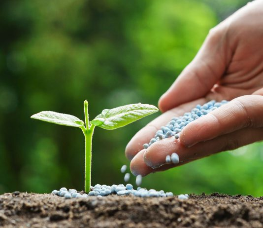 Global Fertilizers Market