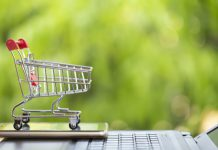 Online and E-Grocery Market