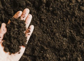Manufactured Soil Market