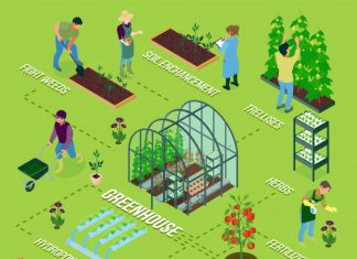 Outdoor & Greenhouse Irrigation System