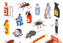 Insect Pest Control Market