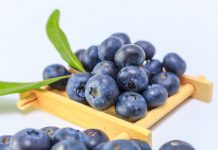 Global Blueberry Extract Market